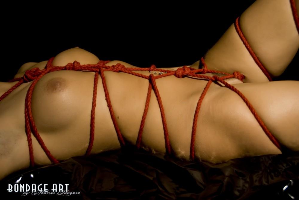 bondage art sklavenvertrag